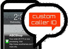 Custom SMS Sender ID